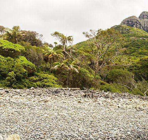 Boat Harbour Mt Lidgbird in background