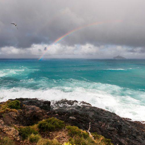 Wild day from Blinky Point - Mutton Bird Island in background