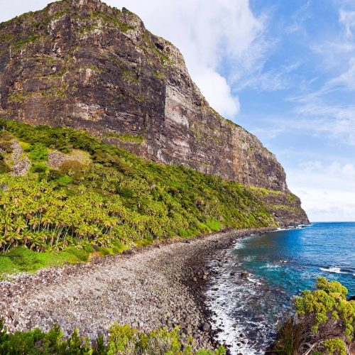 Part of Mt Lidgbirds escarpment from Little Island